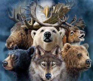 Živalski vodniki
